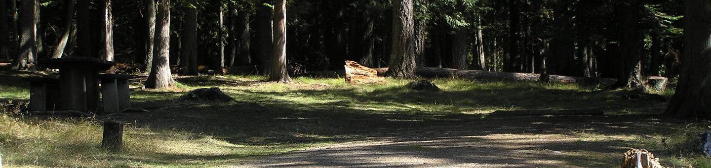 Sam Owen Campground Site 45