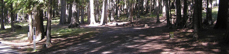 Sam Owen Campground Site 48