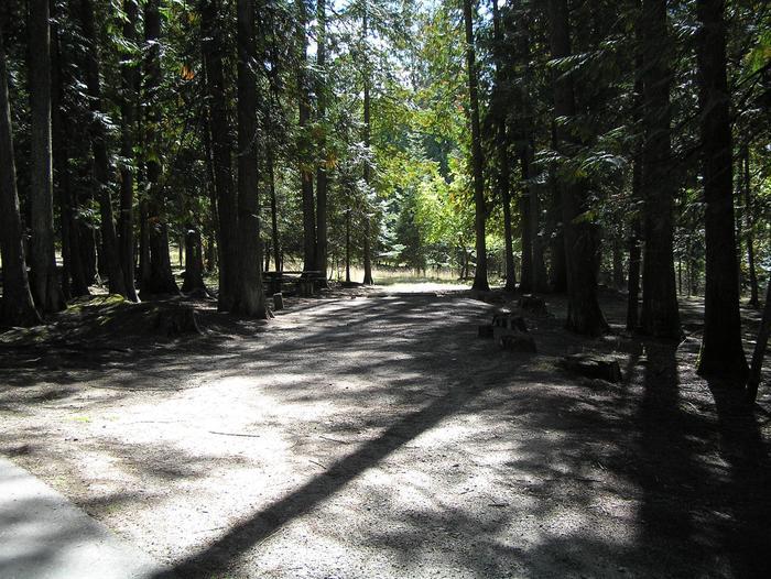 Sam Owen Campground Site 49