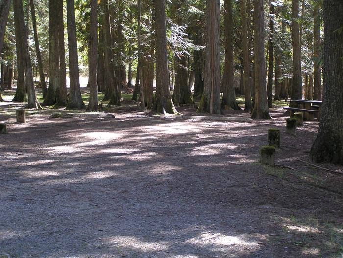 Sam Owen Campground Site 51