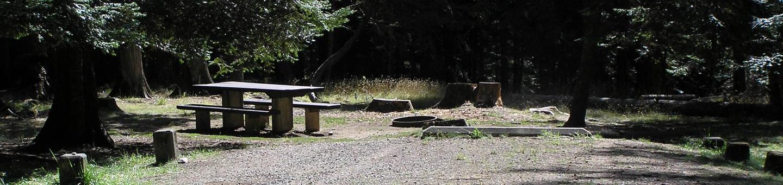 Sam Owen Campground Site 54