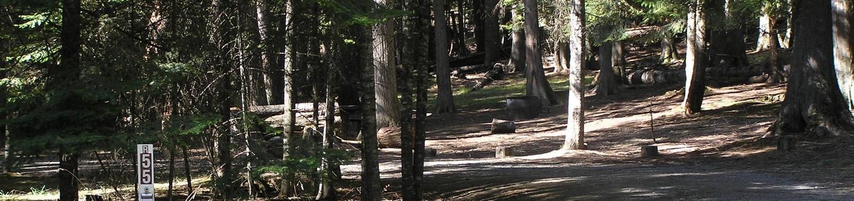 Sam Owen Campground Site 55