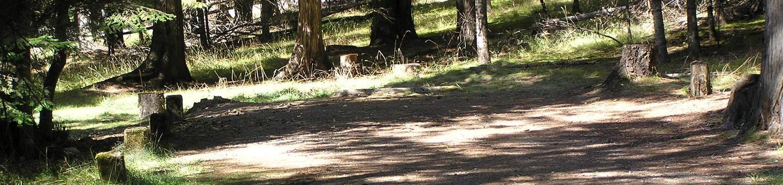 Sam Owen Campground Site 56