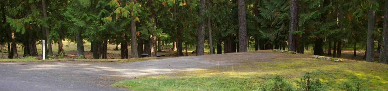 Sam Owen Campground Site 58