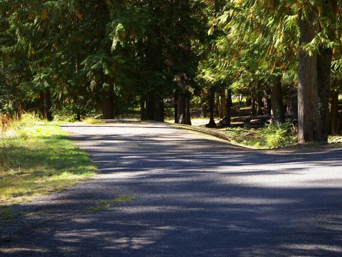 Sam Owen Campground Site 60