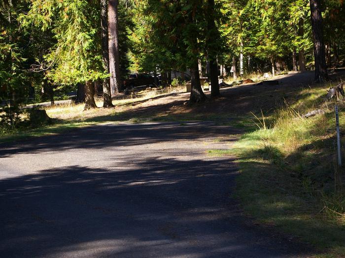Sam Owen Campground Site 61