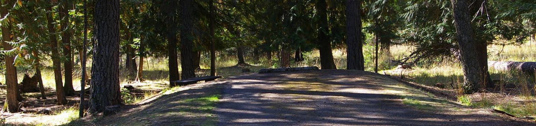 Sam Owen Campground Site 62