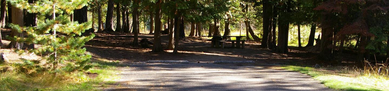 Sam Owen Campground Site 64