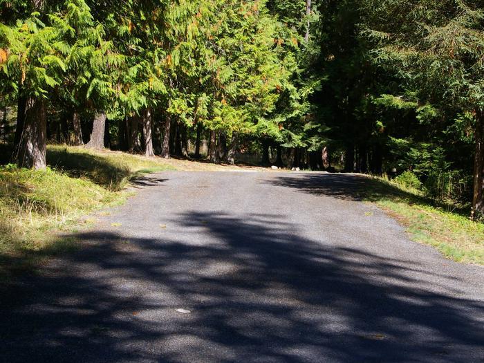 Sam Owen Campground Site 66