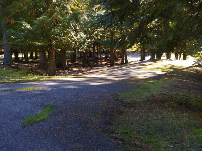 Sam Owen Campground Site 67