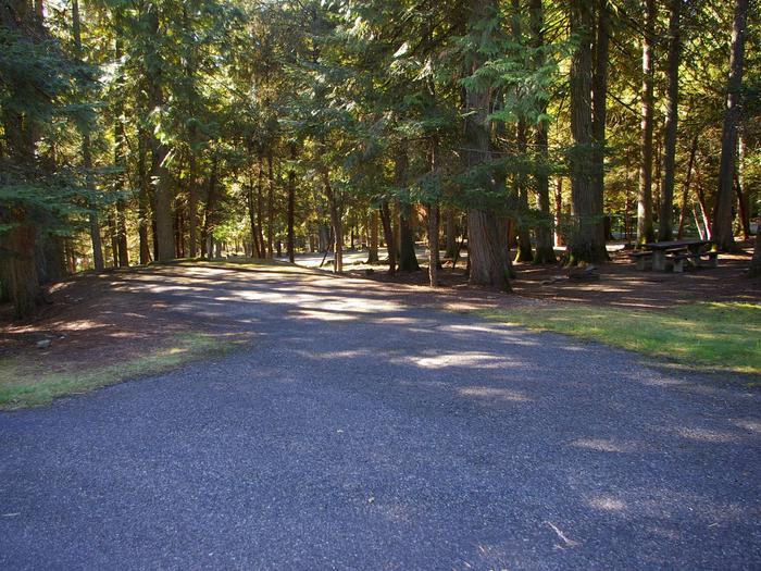 Sam Owen Campground Site 71