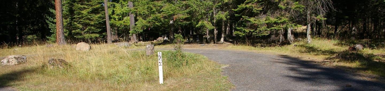 Sam Owen Campground Site 74