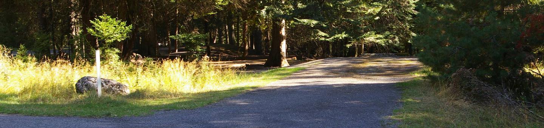 Sam Owen Campground Site 75