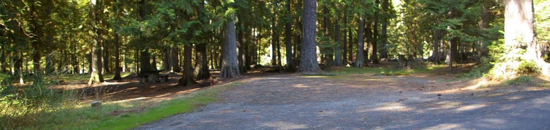 Sam Owen Campground Site 79