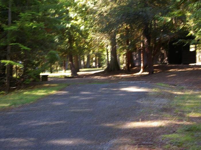 Sam Owen Campground Site 80