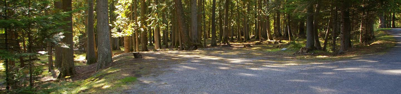 Sam Owen Campground Site 81