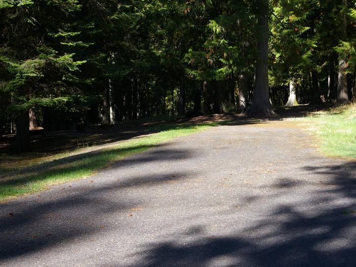 Sam Owen Campground Site 76