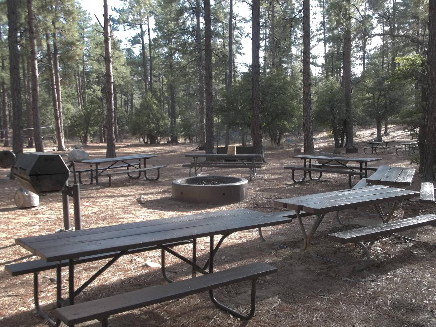 UPPER WOLF CREEK GROUP CAMP FIRE PIT Large fire pit located at the center of the group site, Charcoal grills are also available around the fire pit and at additional sites within the group site.