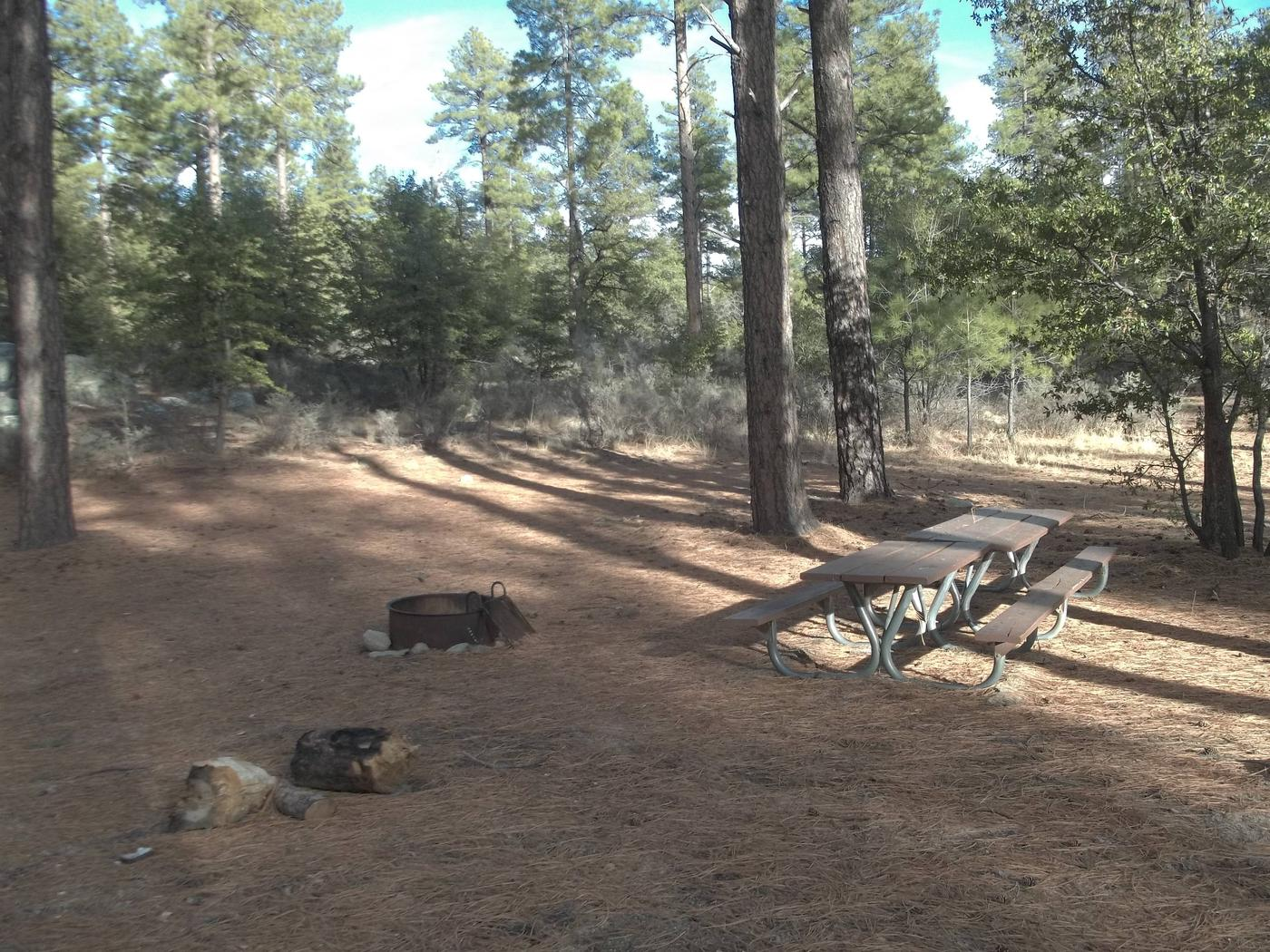 UPPER WOLF CREEK GROUP CAMPAdditional R/V or Camper trailer site with bench and fire pit