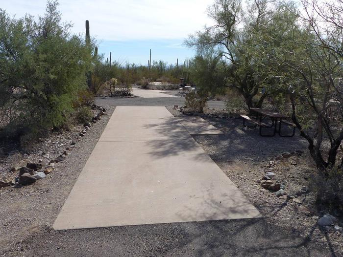 Pull-thru campsite with picnic table and grill, cactus and desert vegetation surround site.  Site 053