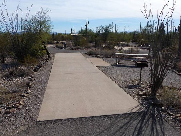 Pull-thru campsite with picnic table and grill, cactus and desert vegetation surround site.  Site 054
