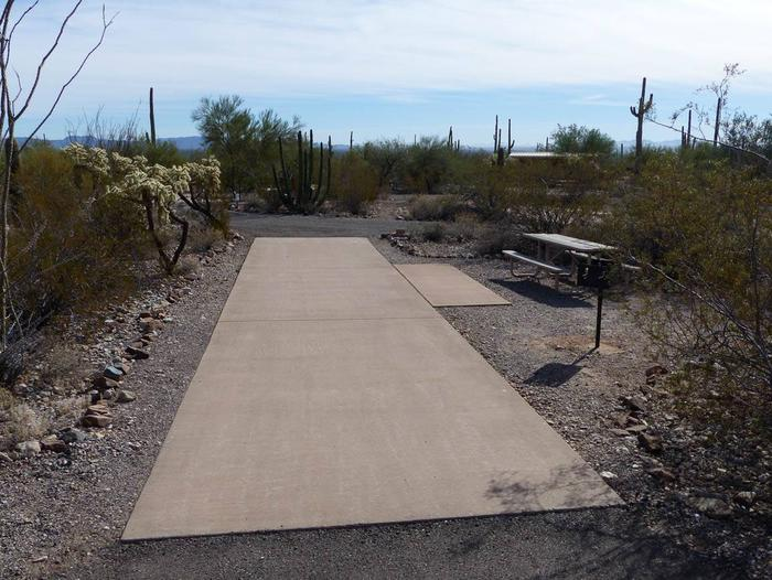 Pull-thru campsite with picnic table and grill, cactus and desert vegetation surround site.  Site 055