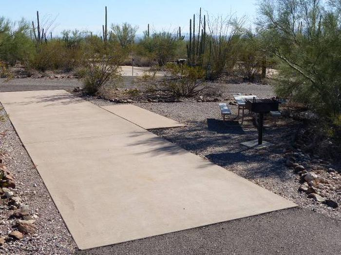 Pull-thru campsite with picnic table and grill, cactus and desert vegetation surround site.  Site 066