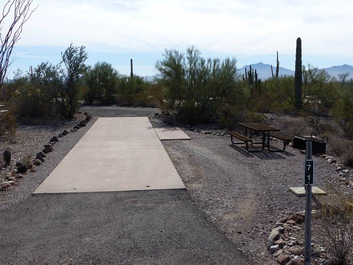 Pull-thru campsite with picnic table and grill, cactus and desert vegetation surround site.  Site 071