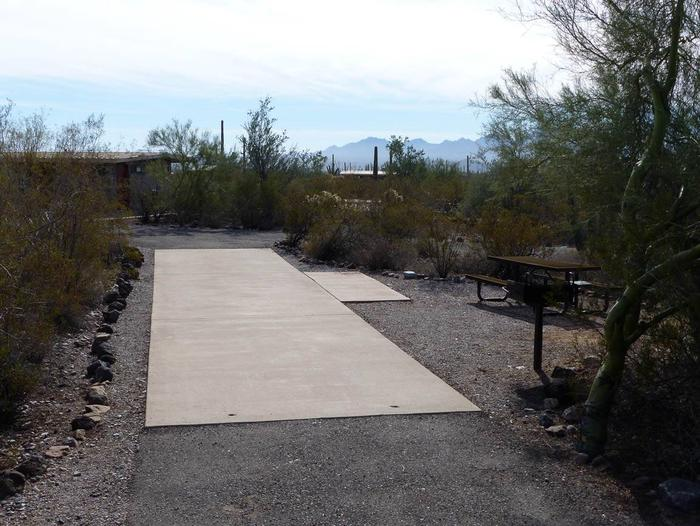 Pull-thru campsite with picnic table and grill, cactus and desert vegetation surround site.  Site 073