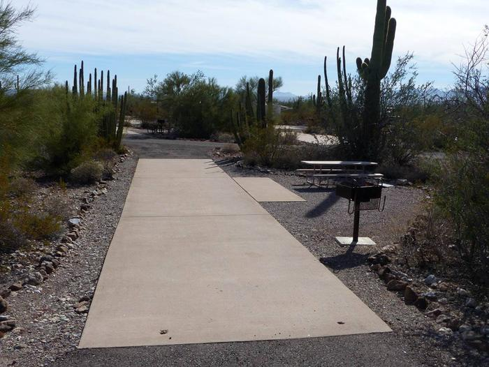 Pull-thru campsite with picnic table and grill, cactus and desert vegetation surround site.  Site 077