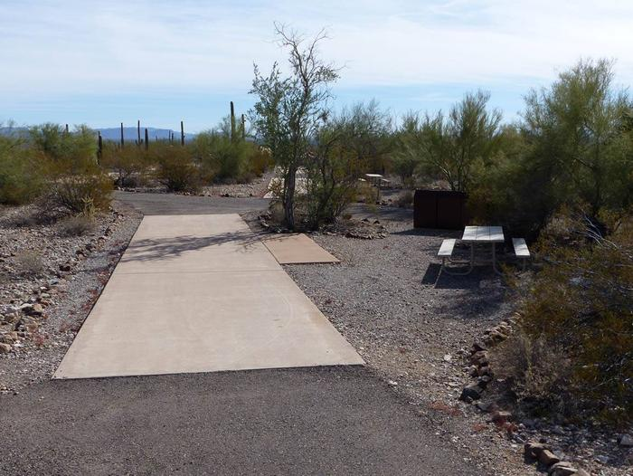 Pull-thru campsite with picnic table and grill, cactus and desert vegetation surround site.  Site 091