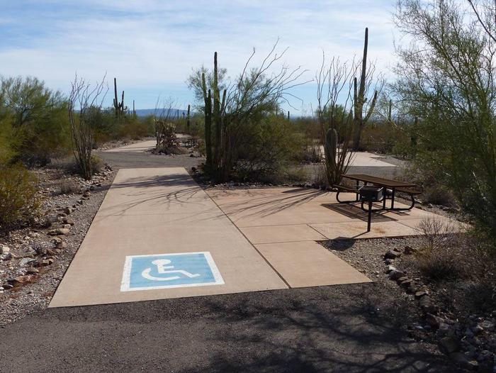 Pull-thru campsite with picnic table and grill, cactus and desert vegetation surround site.  Handicap logo painted on the groundSite 093