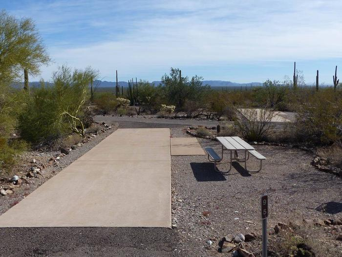 Pull-thru campsite with picnic table and grill, cactus and desert vegetation surround site.  Site 095