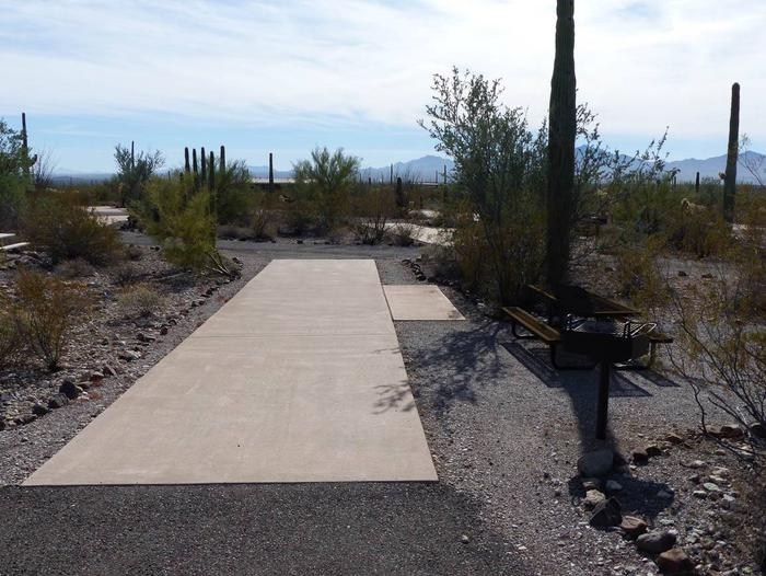 Pull-thru campsite with picnic table and grill, surrounded by cactus and desert vegetation.Site 098