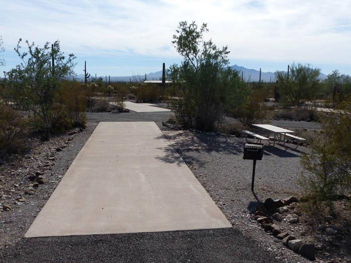 Pull-thru campsite with picnic table and grill, surrounded by cactus and desert vegetation.Site 099