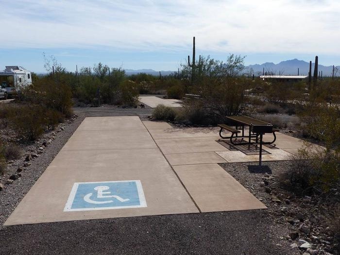 Pull-thru campsite with picnic table and grill, surrounded by cactus and desert vegetation. Handicap logo painted on the groundSite 100