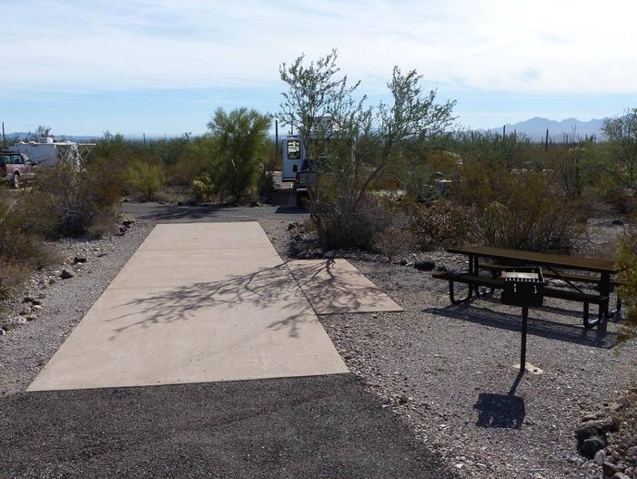 Pull-thru campsite with picnic table and grill, surrounded by cactus and desert vegetation.Site 101