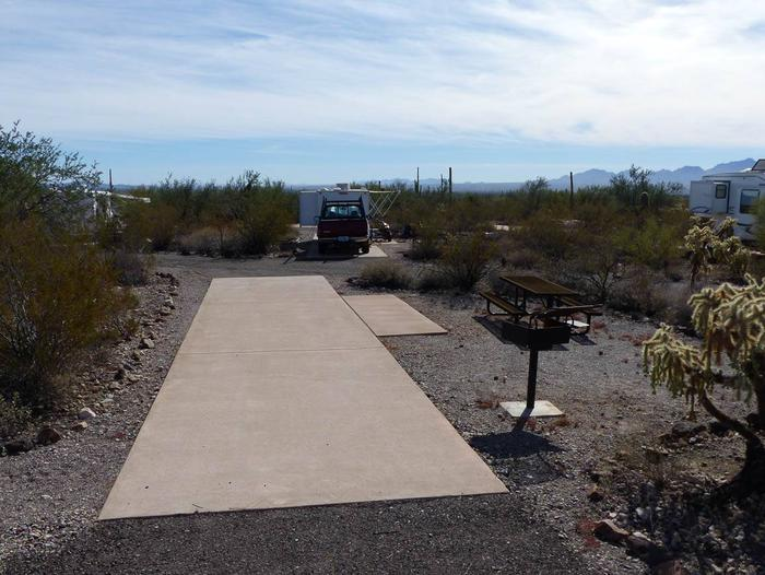 Pull-thru campsite with picnic table and grill, surrounded by cactus and desert vegetation.Site 102
