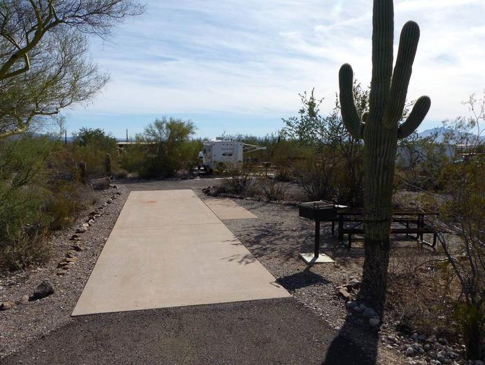 Pull-thru campsite with picnic table and grill, surrounded by cactus and desert vegetation.Site 103