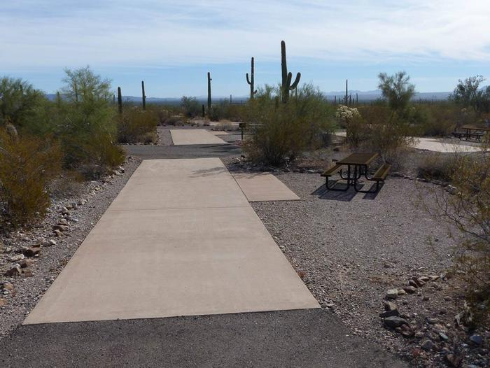 Pull-thru campsite with picnic table and grill, surrounded by cactus and desert vegetation.Site 106