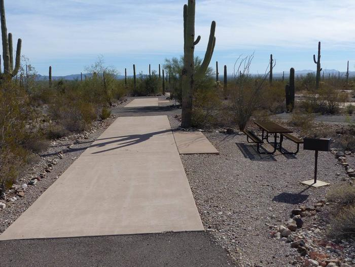 Pull-thru campsite with picnic table and grill, surrounded by cactus and desert vegetation.Site 107