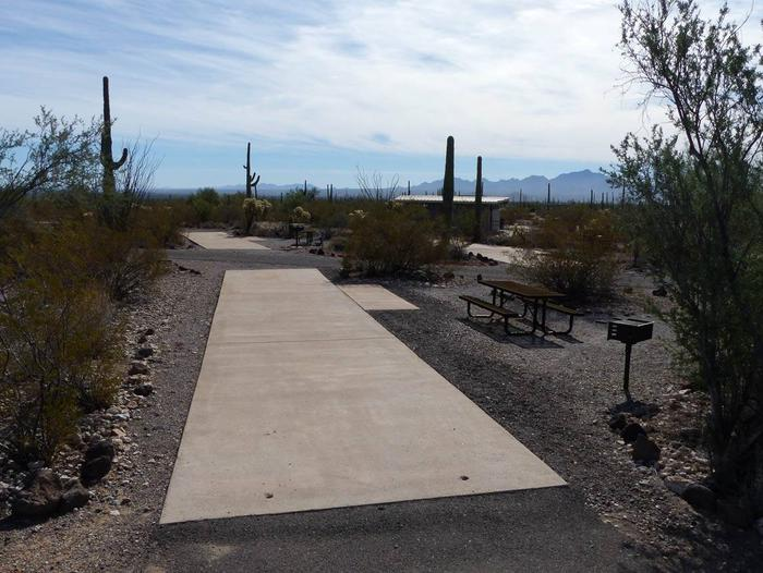 Pull-thru campsite with picnic table and grill, surrounded by cactus and desert vegetation.Site 116