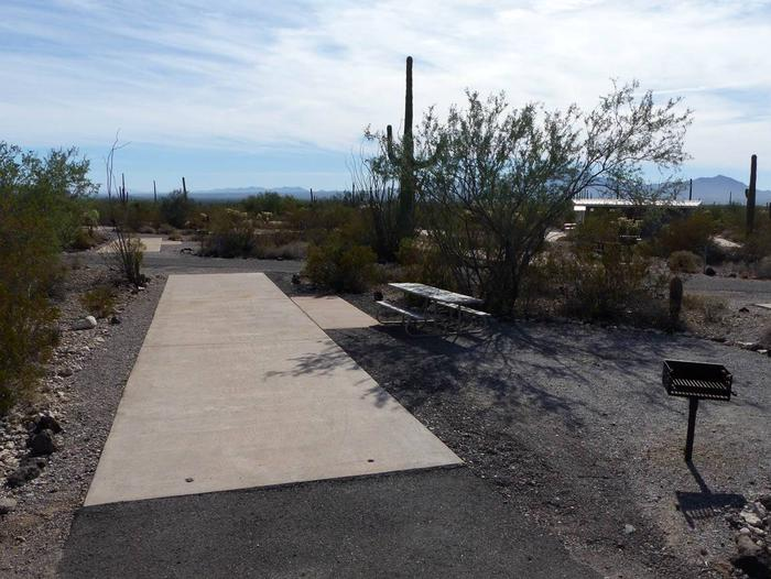Pull-thru campsite with picnic table and grill, surrounded by cactus and desert vegetation.Site 117