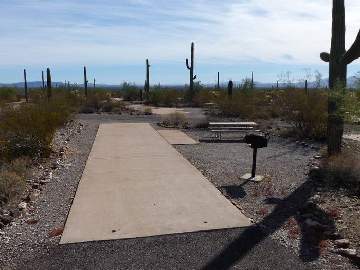 Pull-thru campsite with picnic table and grill, surrounded by cactus and desert vegetation.Site 123