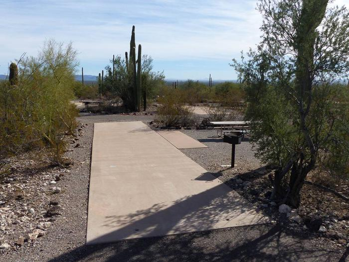 Pull-thru campsite with picnic table and grill, surrounded by cactus and desert vegetation.Site 126