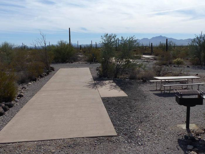 Pull-thru campsite with picnic table and grill, surrounded by cactus and desert vegetation.Site 130