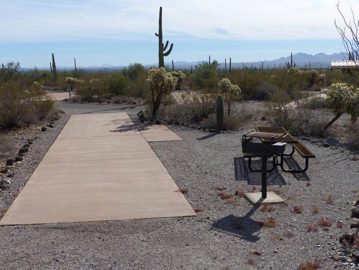 Pull-thru campsite with picnic table and grill, surrounded by cactus and desert vegetation.Site 133