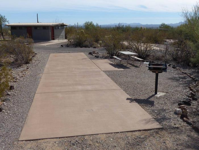 Pull-thru campsite with picnic table and grill, surrounded by cactus and desert vegetation.Site 137
