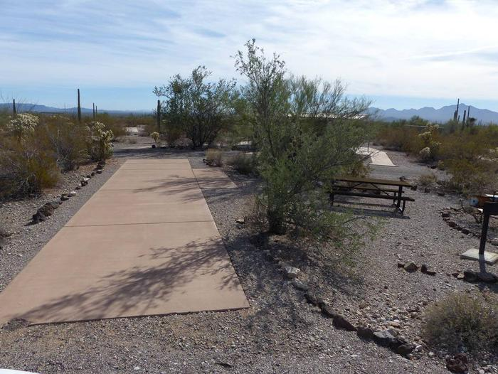 Pull-thru campsite with picnic table and grill, surrounded by cactus and desert vegetation.Site 138