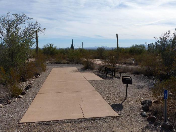 Pull-thru campsite with picnic table and grill, surrounded by cactus and desert vegetation.Site 150